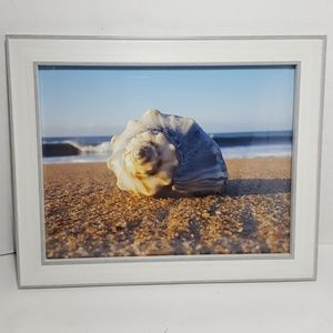 Original Art Seashell in front of a Crashing Wave